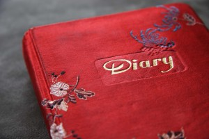 Red Diary Book Cover
