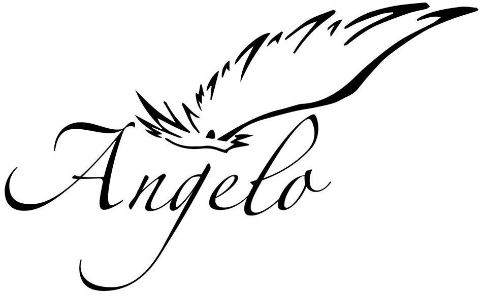 angelo (2)