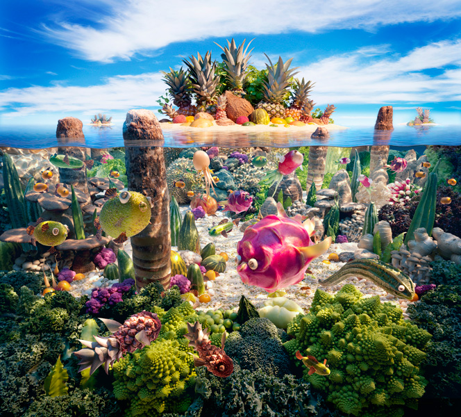 Coralscape fot. Carl Warner
