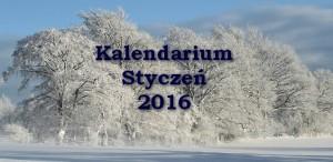 Kalendarium_styczeń_2016_kulturantki_okładka
