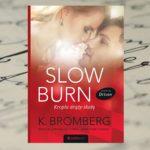 Czas jest cenny, marnuj go mądrze – K. Bromberg, Slow Burn. Kropla drąży skałę