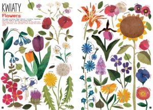 Kolorowe kwiaty ręką Mai Hanisch (Tak wiele rzeczy)