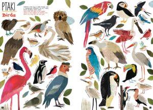 Tak wiele rzeczy - kolorowe ptaki spod ręki Mai Hanisch
